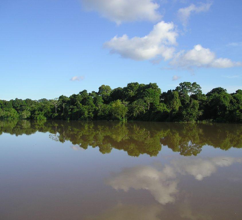 Sensibilización hacia la Amazonia